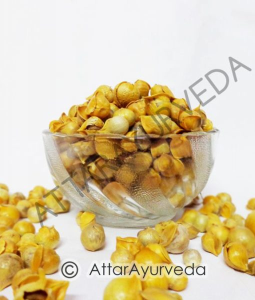Kashmiri Lahsun - Ek Pothi Lahsun - Snow Mountain Garlic