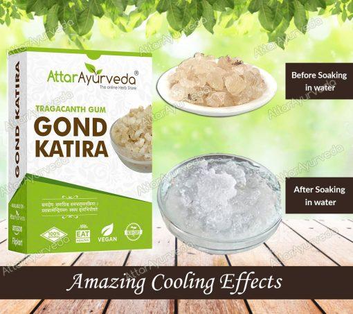 Gond Katira - Tragacanth Gum - Dink - Astragalus gummifer