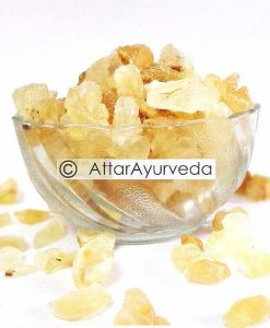 Gond Katira - Tragacanth Gum - Dink - Astragalus gummifer closer view (Attar Ayurveda)