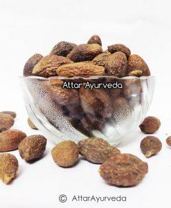 Niranjan Phal - Malva Nuts - Sterculia lychnophora