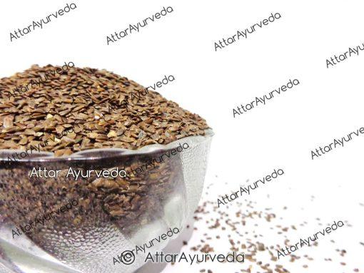 Talmakhana - Kokilaksha - Astercantha Longifolia