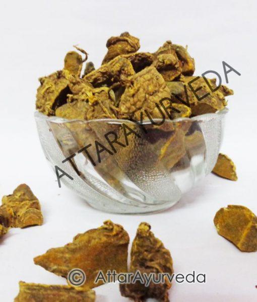 Amba Haldi - Ban Haldi - Curcuma Aromatica