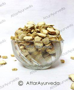 Kapoor Kachri - Ginger Lily - Hedychium Spicatum