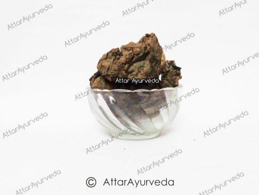 Mochras - Red Silk Cotton Tree - Bombax Ceiba