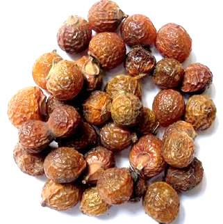 Reetha - Aritha - Areetha - Soapnuts