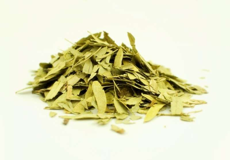 Buy senna leaves