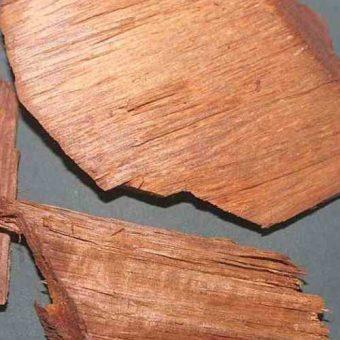 Vijaysar Wood - Pterocarpus Marsupium