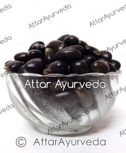 Kaunch Seeds (Black)