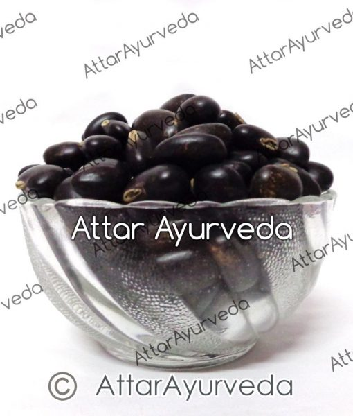 Kaunch Seeds (Black)