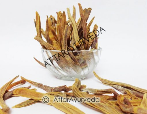 Nepali Shatavari - Asparagus Racemosus