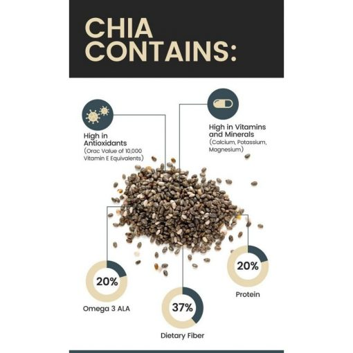 Chia Seeds - Salvia hispanica