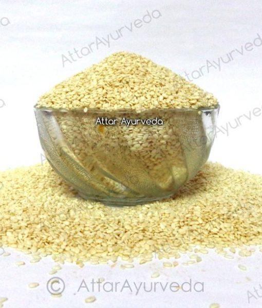 Safed Til - Hulled Sesame Seeds - Sesamum Indicum
