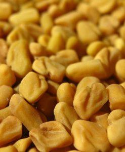 Methi Dana - Fenugreek Seeds - Trigonella Foenum Graecum