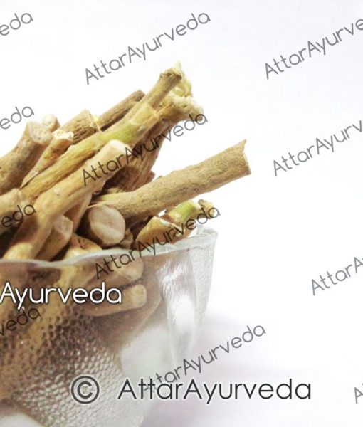 Ashwagandha - Asgandha - Withania Somnifera - Indian ginseng