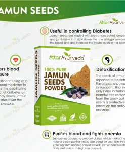 Jamun Ghutli - Syzygium Cumini - Eugenia Jambolana Seeds