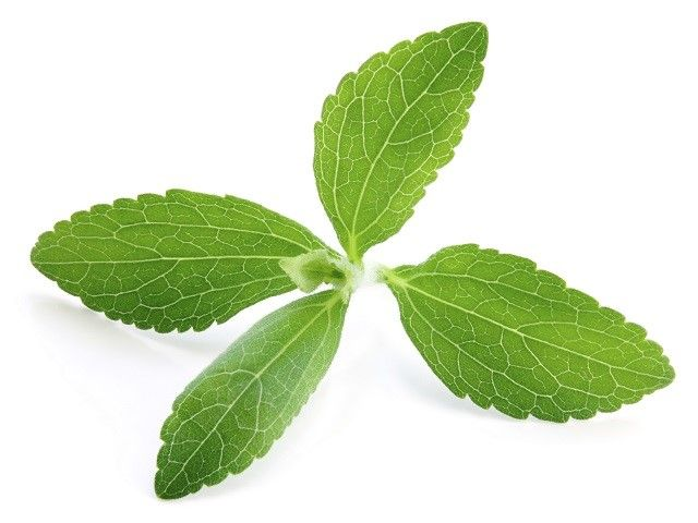 Switch from sugar to stevia : Approved in over 60 countries!