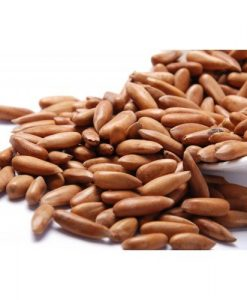 Shelled Pine Nuts | Chilgoza