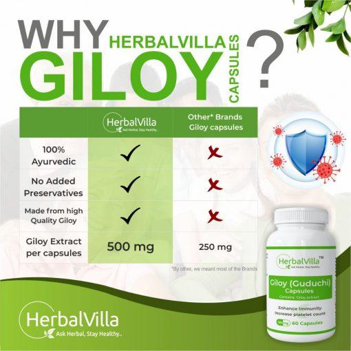 Herbalvilla Giloy capsules
